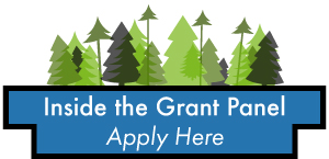 Inside the Grant Panel apply here button