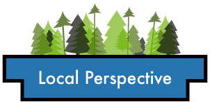 Local Perspective button